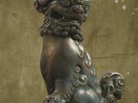 zhelong-xu-880-1