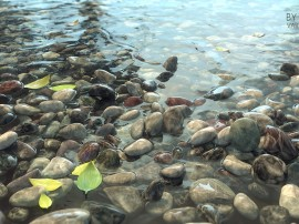 rocks_variation_shader_intersection_normal